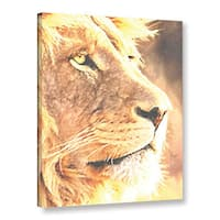 Scott Medwetz's Lion, Gallery Wrapped Canvas