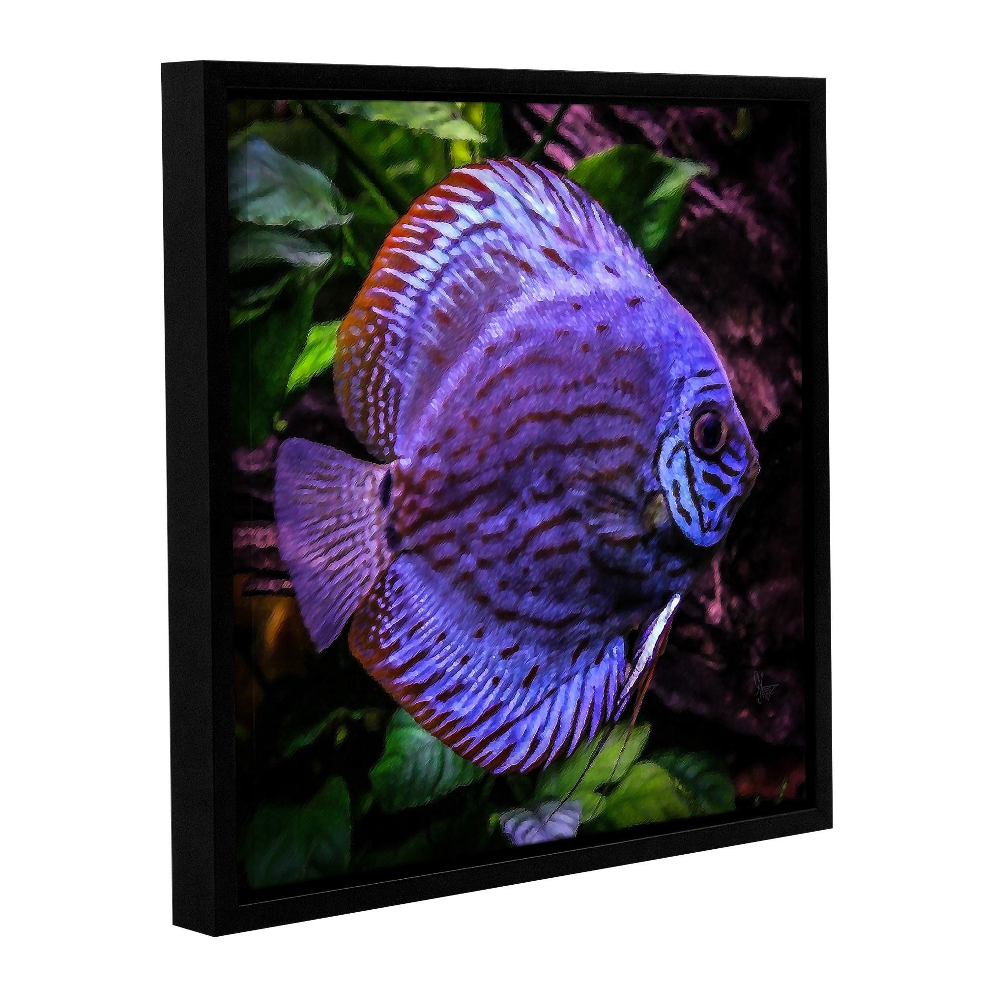ArtWall Scott Medwetz 'Discus Fish' Canvas Gallery-wrappe...