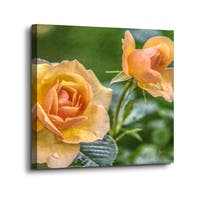 Scott Medwetz 'Suns Love in the Spring' Gallery-wrapped Canvas