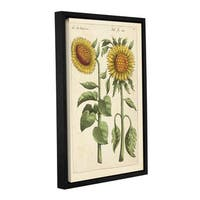 Art Wall German School 'Illustration From Florilegium 2' Gallery-wrapped Floating Frame Canvas Wall Art