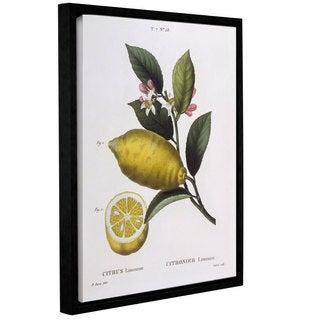 Art Wall Pancrace Bessa 'Lemon Citrus Limonium' Gallery-wrapped Floater-framed Canvas Wall Art