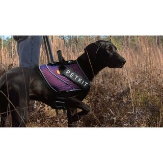 Petkit Air Quad-Connecting Adjustable Cushioned Chest Compression Dog Harness (More options available)