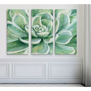 SucculentHAC17-17994-3P (3 options available)