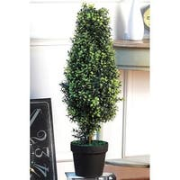 """Orchid Tree Topiary 30""""H"""