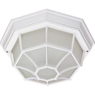 ES 1 Light Spider Cage Ceiling