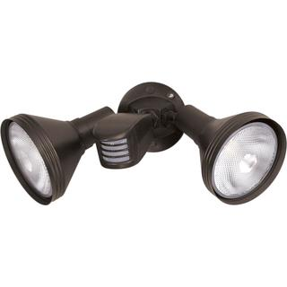 2 Light PAR38 Floodlight