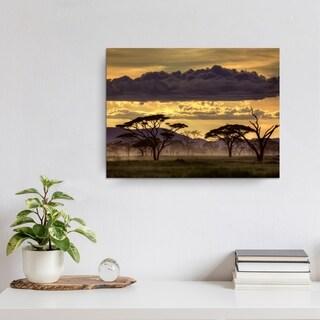 Ready2HangArt 'Good Evening Tanzania' Canvas Wall Decor - Grey (4 options available)