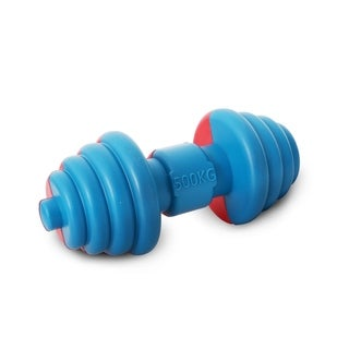 Pet Life Iron-Wag Durable Water Floating Chew and Fetch Dog Toy