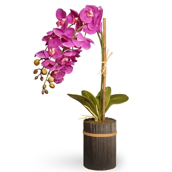 "23"" Potted Purple Orchid"