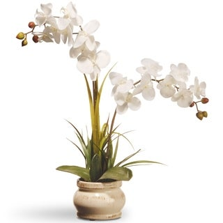 """24"""" White Potted Orchid Flower"""