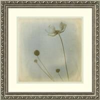 Framed Art Print 'Faded Away I' by Jennifer Jorgensen 19 x 19-inch