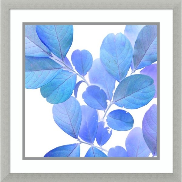 Framed Art Print 'Xray Leaves I' by Vision Studio 22 x 22-inch