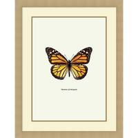Framed Art Print 'Yellow Butterfly' by Graphinc 29 x 37-inch