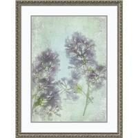 Framed Art Print 'Lilac' by Judy Stalus 29 x 37-inch