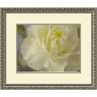Framed Art Print 'Rose Whisper I' by Judy Stalus 25 x 21-inch