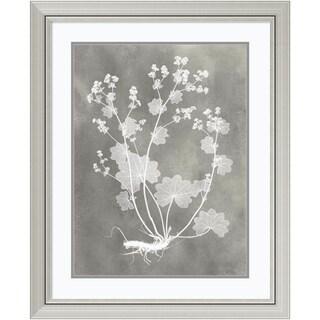 Framed Art Print 'Herbarium Study I' by Vision Studio 27 x 33-inch