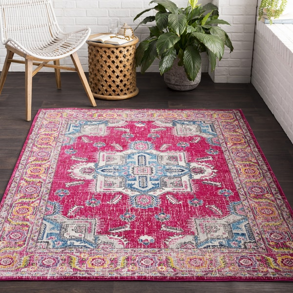 Vapouria Classic Traditional Area Rug (2'7 x 7'6)