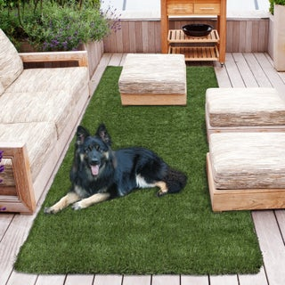 Sweethome Meadowland Collection Indoor/Outdoor Artificial Grass Rug, (4' x 7') (2' x 5')