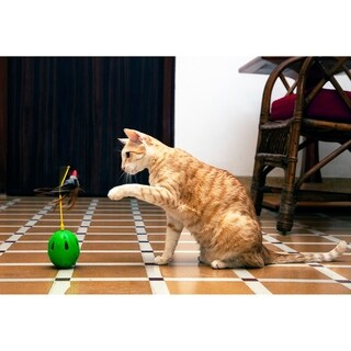 Iconic Pet Tricky Tumble Interactive Cat Toy