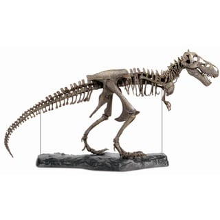 Discovery 60-Piece T-Rex 3-D Skeleton Puzzle