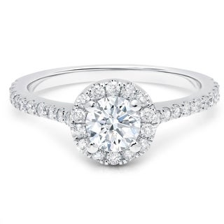 LeZari & Co. 1.00ct TDW with a 0.55ct Round Center Diamond, Classic, Halo, Cathedral, Basket engagement ring. - White G-H