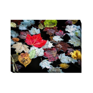 Autumn Leaves by David W. Pollard Gallery-Wrapped Canvas Giclee Art