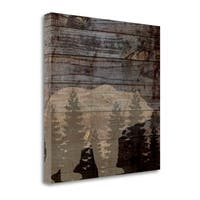 Rustic Bear By Piper Ballantyne,  Gallery Wrap Canvas - 20 x 20