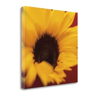 Sunflower On Red By Jane-Ann Butler,  Gallery Wrap Canvas