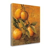 Orange Branch By Linda Thompson,  Gallery Wrap Canvas - 22 x 22