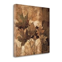 Leaf Patterns II By Linda Thompson,  Gallery Wrap Canvas - 22 x 22