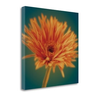 Chrysanthemum On Turquoise By Jane-Ann Butler,  Gallery Wrap Canvas