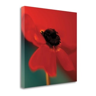 Red On Turquoise By Jane-Ann Butler,  Gallery Wrap Canvas