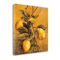 Lemon Branch By Linda Thompson,  Gallery Wrap Canvas - 22 x 22