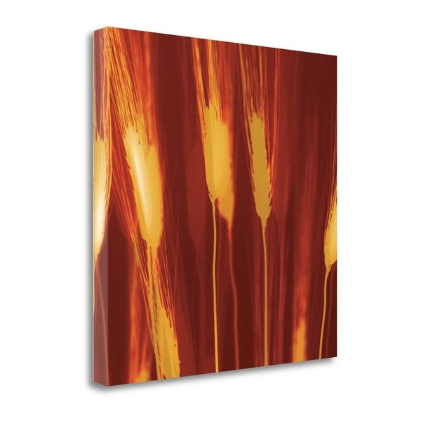 Harvest By Ethan Jantzer,  Gallery Wrap Canvas