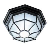 Acclaim Flushmount 2-Light Outdoor Matte Black Ceiling Light