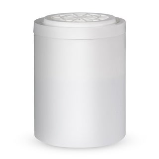 iSpring SFC01 Replacement Shower Filter Cartridge for SF1S/SF1W