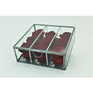 Preserved Roses in Small Looking Glass Box - Red