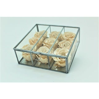 Preserved Roses in Small Looking Glass Box - Champagne