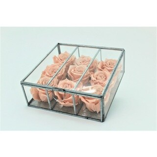 Preserved Roses in Small Looking Glass Box - Peach
