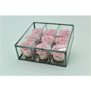 Preserved Roses in Small Looking Glass Box - Blush