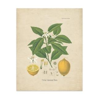 Lemon Handmade Paper Print