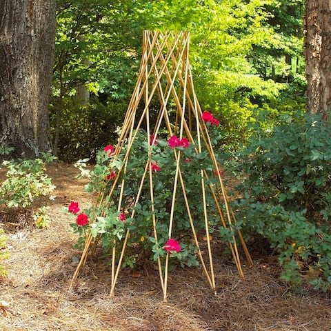 GardenPath 6-pack Teepee Flower Support