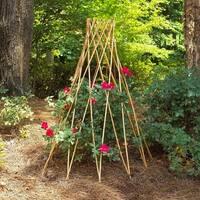 GardenPath 6-pack Teepee Flower Support