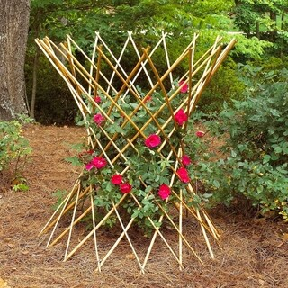 GardenPath 6-pack Hourglass Flower Support