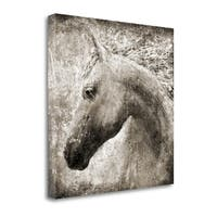 Majestic Horse By Eric Yang,  Gallery Wrap Canvas