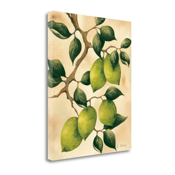 Italian Harvest - Limes By Doris Allison,  Gallery Wrap Canvas