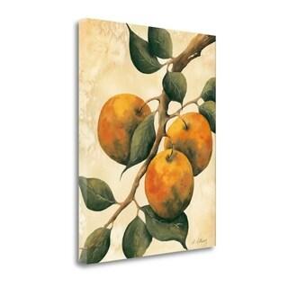 Italian Harvest - Oranges By Doris Allison,  Gallery Wrap Canvas