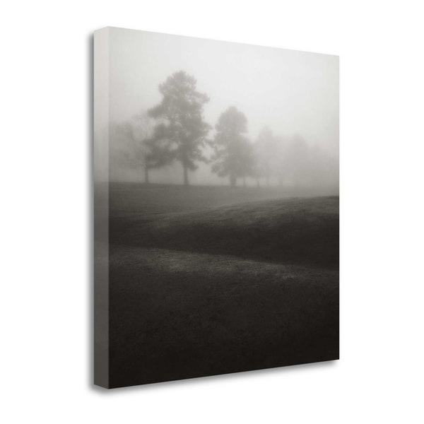 Fog Tree Study II By Jamie Cook, Gallery Wrap Canvas