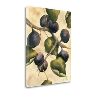 Italian Harvest - Figs By Doris Allison,  Gallery Wrap Canvas