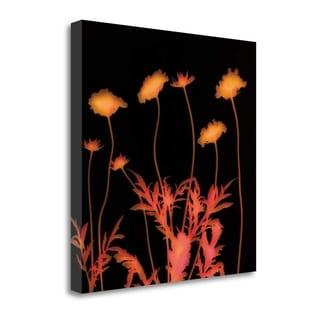 Delight By Ethan Jantzer,  Gallery Wrap Canvas